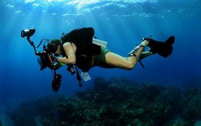 Que savoir sur la photographie sous-marine?